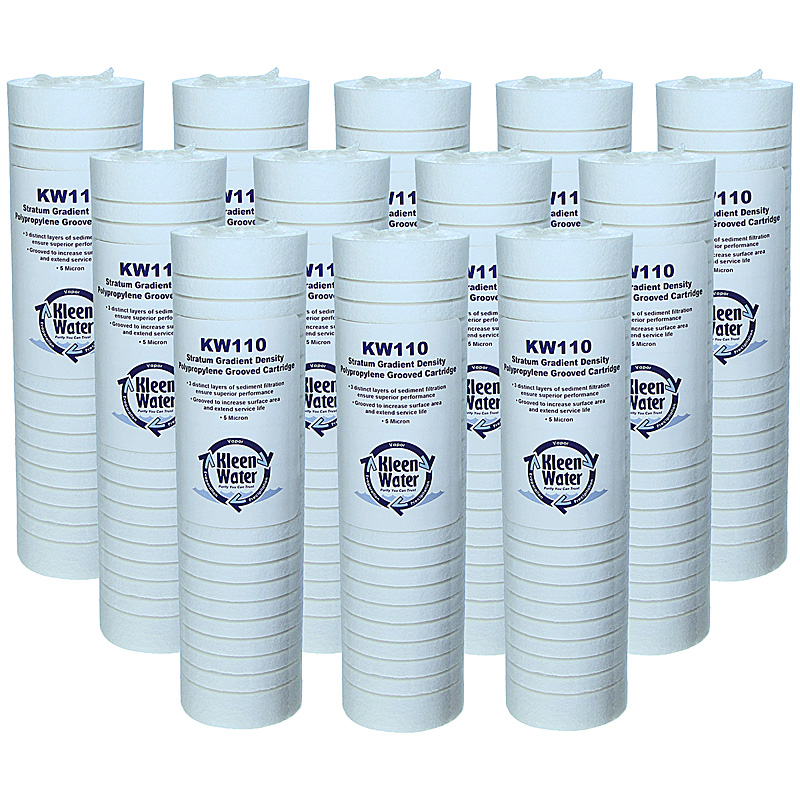 Everpure EC110 EV9534-12 Compatible Fit Replacement Filters, Set of 12 - Click Image to Close